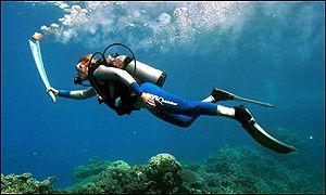 Před letní olympiádou v Sydney se pochodeň dostala i pod vodu.