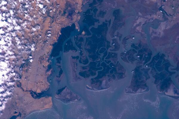 Říční delta v jižním Pákistánu.