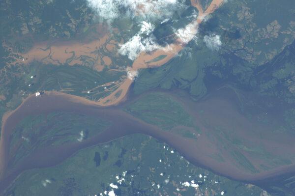 1300 kilometrů dlouhá brazilská řeka Rio Branco se vlévá do známějšího toku Rio Negro.