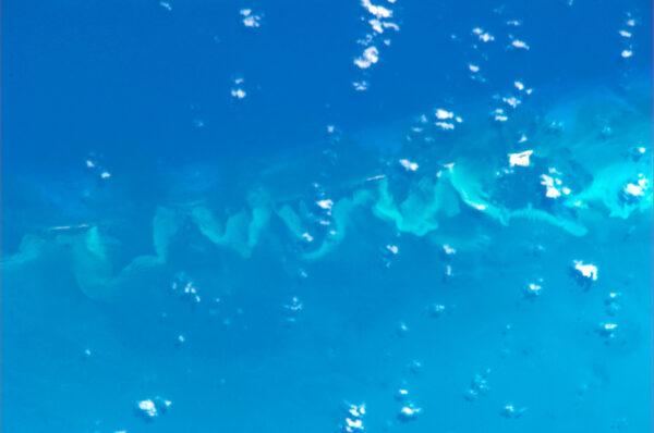 Vypadá to, jako kdyby někdo vymáchal štětec ve vodě, ve skutečnosti je na snímku podmořské pohoří.