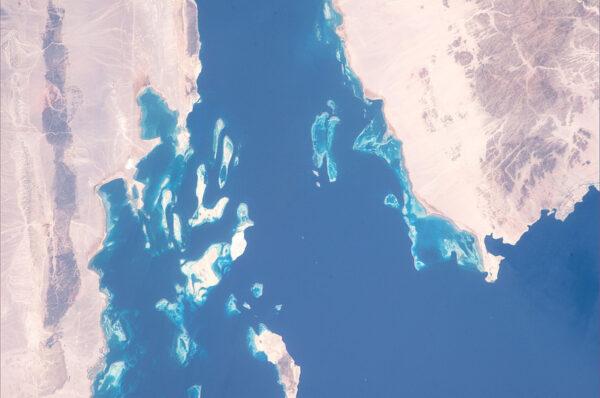 Korálové útesy v Rudém moři - sen každého potápěče.