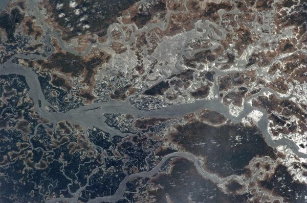 Z výšky vypadají guinejské bažiny jako místo z jiného světa