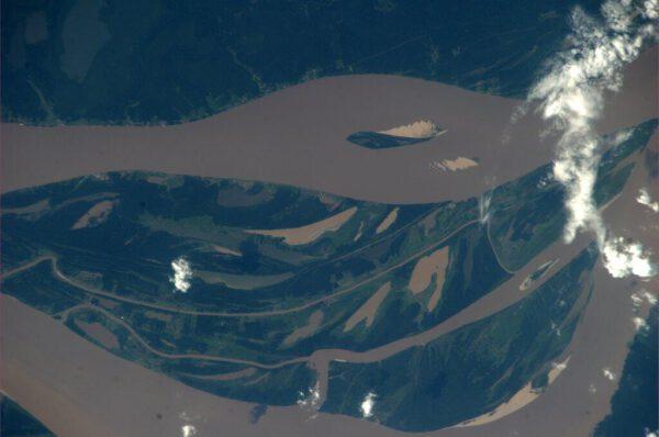 Amazonka a její půvabné zákruty