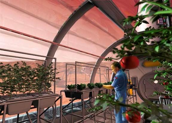 Dočkáme se jednou plodin pěstovaných na Marsu?