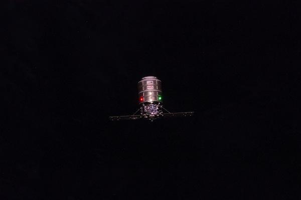 Cygnus v noci