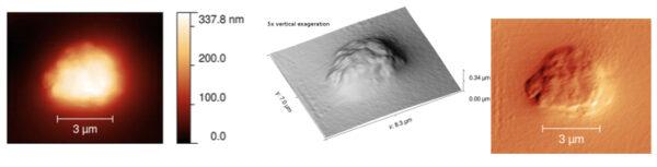 Tři různé výstupy při scanování částice vápníku mikroskopem MIDAS Kredit: ESA/Mark Bentley/Institut für Weltraumforschung, Österreichische Akademie der Wissenschaften, Graz, Austria