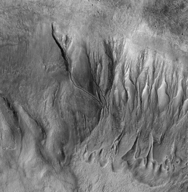 Četná koryta v oblasti Terra Sirenum. Povšimněte si sedimentálních struktur ve spodní části fotografie.