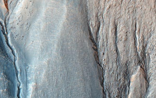 Detail koryt v oblasti Terra Sirenum.