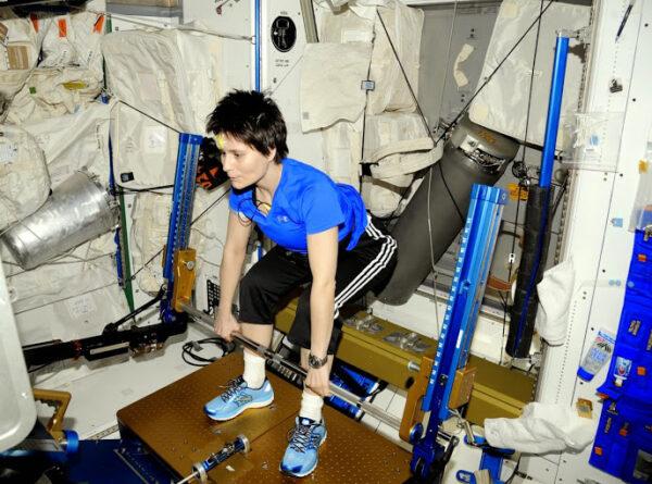 Posiluju na AREDu (a také jej opravuju), našem zařízení pro fitness cvičení.