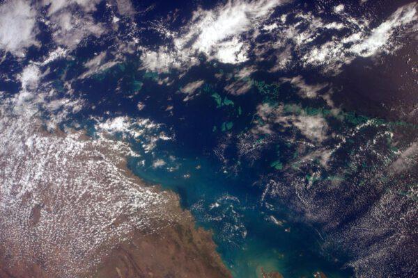 """""""A pak se mi před očima objevilo tohle. Úžasné! Je to část Velkého bariérového útesu v Korálovém moři."""""""