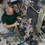 Zařízení CDRA s astronautem Jeffrey Williamsem. Zdroj: spaceref.com