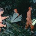 Nácvik přežití v panamské džungli