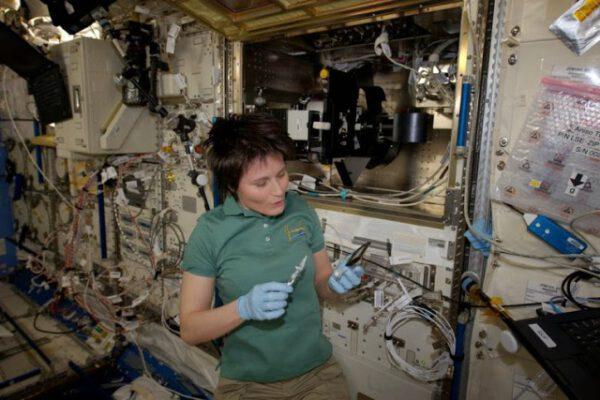 Pracuji na Experimentu JAXA ANISO tubule.