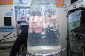 Archivní snímek ze 34. expedice - Roman Romaněnko je focený skrz vodou naplněnou membránu systému Rodnik