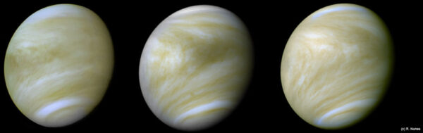 Venuše v nepravých barvách ze snímků v UV záření. NASA/JPL/Ricardo Nunes