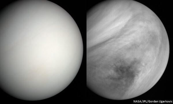 Venuše ze sondy MESSENGER. NASA/JPL/Gordan Ugarkovic