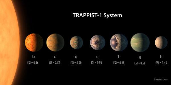 Přehled exoplanet systému TRAPPIST-1. Povrchy těles jsou samozřejmě smyšlené, jejich vzájemné poměry velikostí (i velikosti hvězdy) již však odpovídají skutečnosti. Hodnota ESI znamená Earth Similarity Index (Index podobnosti se Zemí). Jedná se stupnici od 0 do 1 pro stanovení podobnosti jiných planet se Zemí. Vzorec pro výpočet hodnoty ESI zahrnuje údaje o průměru, hustotě, únikové rychlosti a povrchové teplotě. Naše Země má v tomto indexu hodnotu 1, Mars pak například 0,64 a Venuše 0,44. Trappist 1d a 1e s hodnotami ESI 0,9 a 0,86 se tak dostávájí mezi pět doposud objevených exoplanet, které jsou Zemi nejpodobnější.