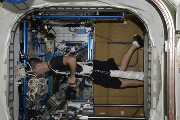 Cvičení je pro nás důležité jak zde, tak i na Zemi. Avšak my tady dokážeme běhat po zdech ;) Ve skutečnosti je cvičení ve vesmíru ještě důležitější, protože život ve stavu beztíže činí těla astronautů slabá. S tím, jak nechodíme, ale vznášíme se, naše kosti a svaly mají méně práce a kvůli tomu řídnou a slábnou! Abychom tomu zabránili, máme přísnou rutinu a trávíme 2 hodiny denně cvičením: máme dva běžecké pásy, rotoped a posilovací stroj.