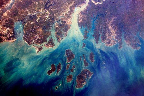 Neuvěřitelné barevné efekty ve vodě delty Saloum, místo světového dědictví UNESCO v Senegalu. Hladiny moří se zvyšují kvůli klimatickým změnám!