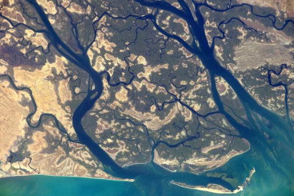 Delta Saloumu v Senegalu. Tady shora dokážete říci, že je plná života, ale je také křehkým ekosystémem.