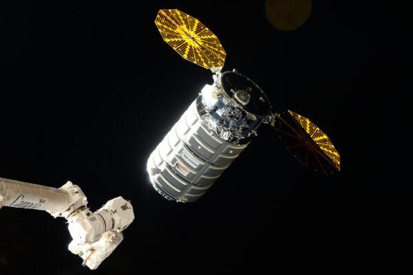 Cygnus těsně před zachycením.