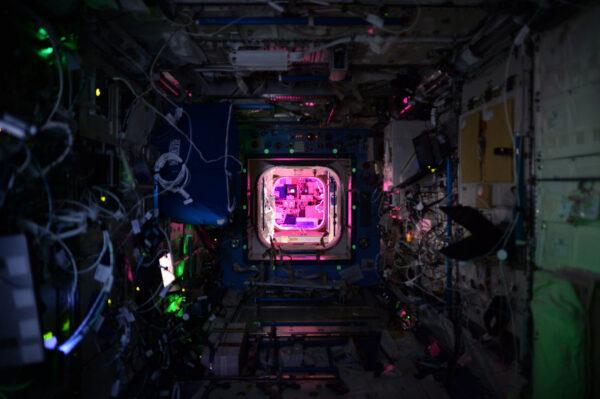 Tak takto vypadá ISS v noci... růžová světla pro experimenty s pěstováním zeleniny, fluorescenční štítky pro únikovou cestu v případě nouze, zelené LED diody pro nepřeberné množství systémů.