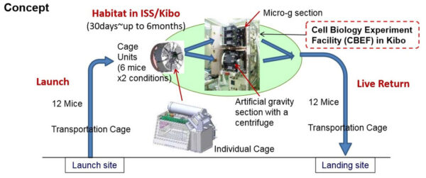 Princip zařízení Mouse Habitat Experiment