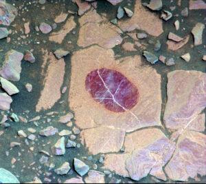 Při ještě komplexnějším použití filtrů se ukáže, že Mastcam zaznamenala purpurový odraz, jenž naznačuje ložisko jemnozrnného hematitu