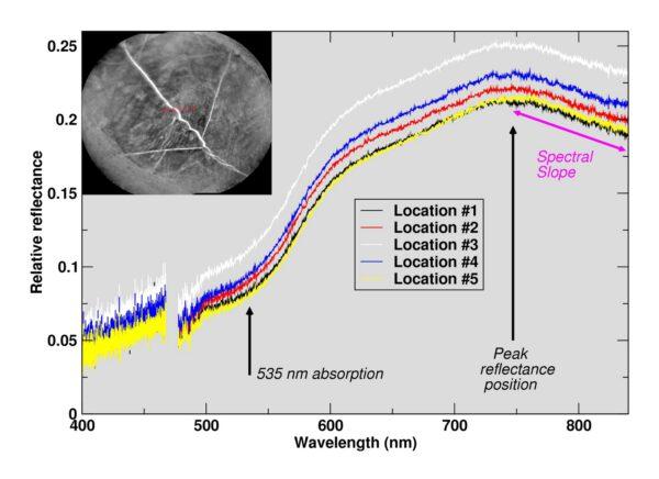 Výstup z ChemCam ukazuje na čtyřech měřeních, že je místo bohaté na hematit a železo. Místo čtyř zásahu laseru je vidět v menším čtvercovém obrázku