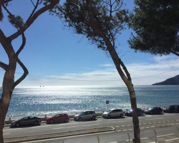 Mezitím v Cannes