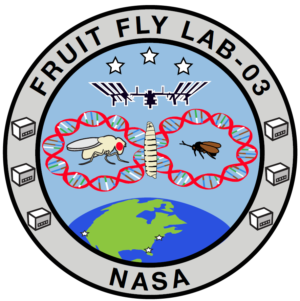 Logo Fruit Fly Lab-03 (FFL-03)