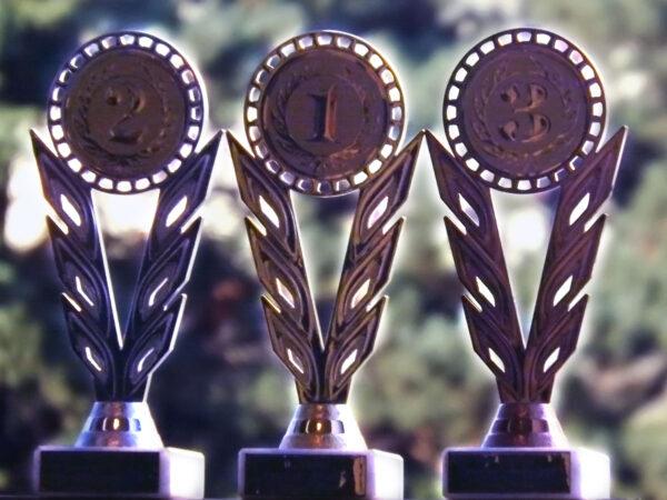 Ocenění pro tři nejaktivnější redaktory našeho webu za uplynulý rok.