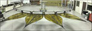 Testovací model okvětních lístků starshade