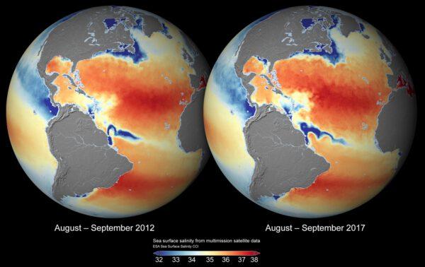 Globální mapa salinity moří