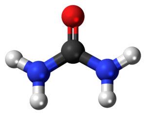 Molekula močoviny - červeně kyslík, černě uhlík, modře dusík, bíle vodík.