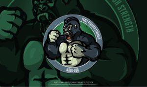 """Logo mise NROL-108 popsal úřad NRO těmito slovy: """"Gorily jsou mírumilovná zvířata, ale pokud je to potřeba, umí být divoká. Stejně jako gorily i naše mise NROL-108 je neustále ve střehu a připravena bránit se. Ukazuje tak odhodlání NRO bránit americké válečníky, zájmy a spojence."""""""