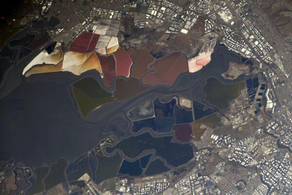 Všemi barvami duhy hraje tento záliv v Kalifornii. Jde o slaniska rezervace San Francisco Bay National Wildlife. Nachází se jižně od stejnojmenného města. Na změny barev má vliv koncentrace soli ve vodě a tím i druh a množství mikroorganismů, které zde žijí. Zdroj: flickr.com