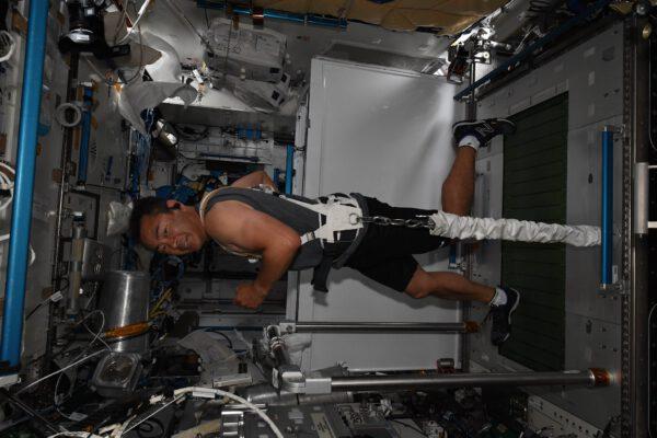 Aki na našem běžeckém pásu T2. Pokud existuje jedna věc, kterou nemůžeme ve vesmíru vynechat, je to cvičení našeho svalstva. Naši plánovači nám v tomto nedají volno dokonce ani v tomto pracovním vytížení kosmických vycházek… zapomeňte na výmluvy. Cvičení je důležité na Zemi, ale ještě více ve vesmíru. Musíme se hýbat, abychom zabránili poškození našich svalů a kostí. Plánování našich aktivit je komplikovaná mozaika hodná šampiónů hry Tetris. Čas každého z nás musí být využit beze zbytku, musíme mít čas na jídlo, cvičení i odpočinek. A cvičení na strojích a vůbec náš pobyt svými vibracemi zase zasahuje do průběhu experimentů. A teď si vemte, že na palubě je nás sedm a každý má cvičit dvě hodiny denně. To máte 14 hodin používání sportovních nástrojů každý den. To je výkon hodný Arnolda Schwarzeneggera! Zdroj: flickr.com