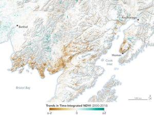 Mapa ukazuje úbytek vegetace v některých oblastech a naopak výrazné zezelenání.