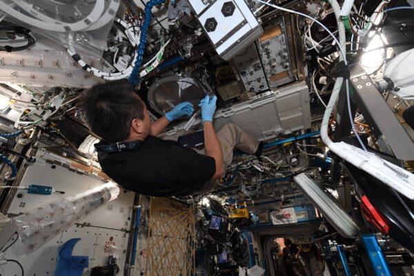 Zde je Aki Hošide jakoby zavěšen pod stropem evropského laboratorního modulu Columbus. Snažíme se zde připravit pevnější, lehčí a recyklovatelnější materiály. Zdroj: twitter.com