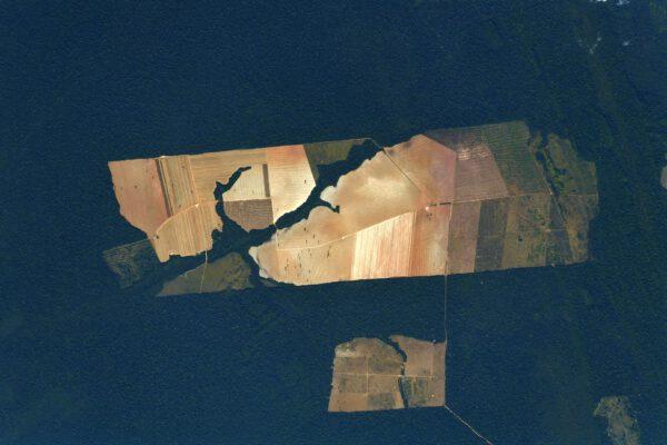 Podivuhodný útvar uprostřed pralesa. Nepochopitelný důsledek snahy lidí upřednostnit krátkodobý zisk před přírodou. Zdroj: flickr.com