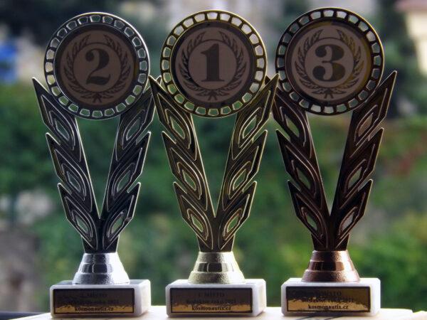 Ocenění pro tři redaktory našeho webu za uplynulý rok.