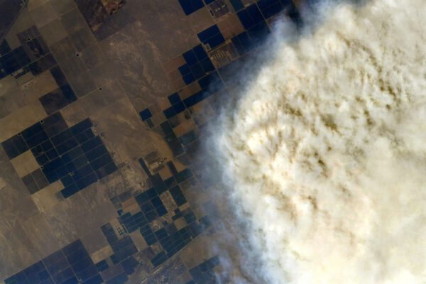 Detailní pohled na kouř a pole v Kalifornii poblíž parku Sequoia. Zdroj: flickr.com