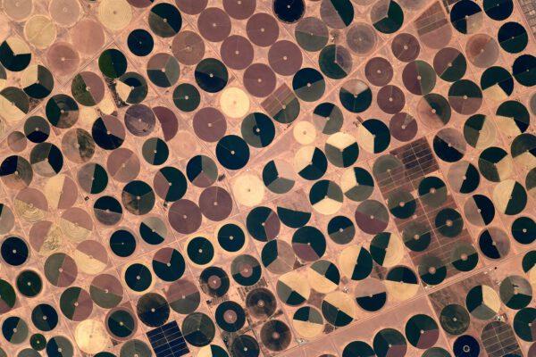 Pohled na tato políčka dává vzpomenout na dětsví a povídky o Neználkovi ve Slunečním městě. Nebo na hodiny dějepisu a trojpolní hospodaření, zde dovedené k dokonalosti, když vidíme cosi, co připomíná českou vlajku na křídle letadla. Zkrátka opět nás nepřestává krajina v poušti překvapovat. Zdroj: flickr.com